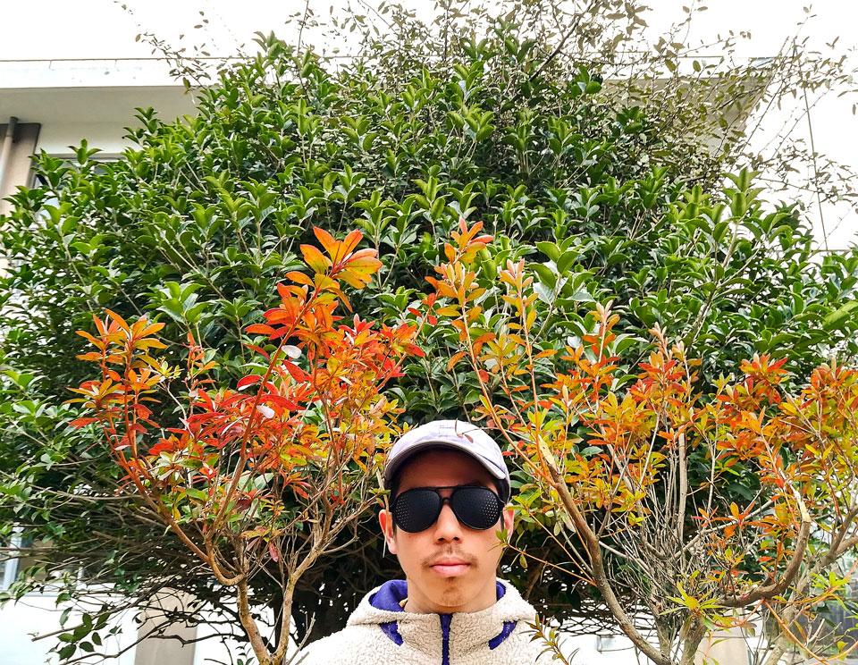 インターントムの脱都会ブログ「キコリは伊達じゃねぇ!」